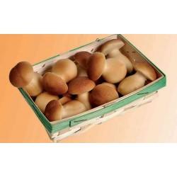 Marcipánové houby v košíku