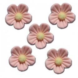Květy z cukrové hmoty - lososové