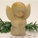 Anděl Evi