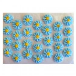 Cukrové kytičky - Gerberky modré 28 ks