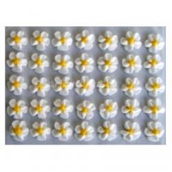 Cukrové květy točené - bílé 35 ks
