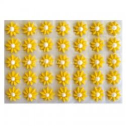 Cukrové květy - Astry žluté 35 ks