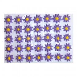 Cukrové květy - Astry fialové 35 ks