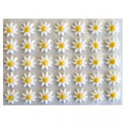 Cukrové květy - Astry bílé 35 ks