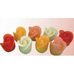 Dortové růže